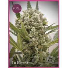La Katana Feminised Seeds