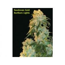 Northern Lights Regular Seeds