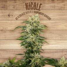 Nicole Feminised Seeds