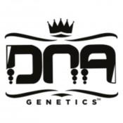 DNA Genetics